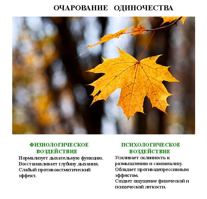 http://www.magicwish.ru/NP/lechebnaja_fotografija22.jpg