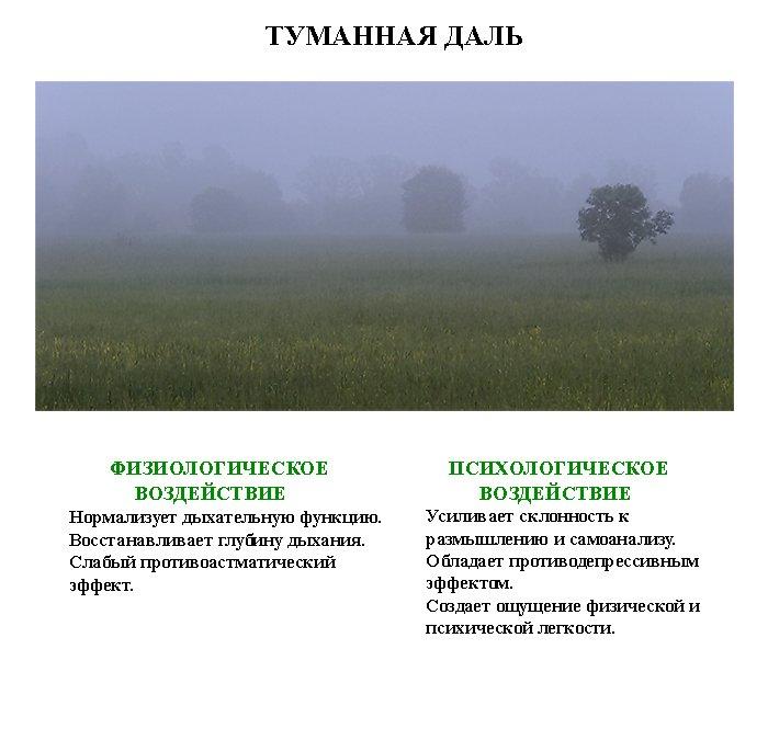 http://www.magicwish.ru/NP/lechebnaja_fotografija29.jpg