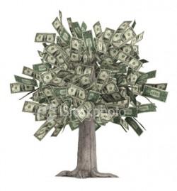 Выращиваем денежки