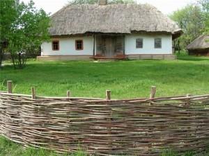 Плетеная изгородь из прутьев орешника.
