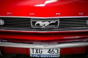 Популярные изображения по запросу Нумерология автомобиля Бесплатная