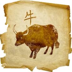 восточный гороскоп на 2015 год для Быка