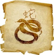 восточный гороскоп на 2015 год для змеи
