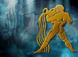 Любовный гороскоп на 2016 год Водолей