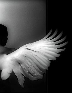 Жил-был ангел
